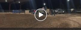 wentz point arena video