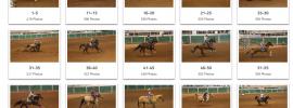 barrel racing photos from queen creek arizona