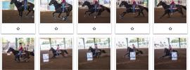 pima county fairgrounds barrel racing